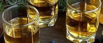 Можжевеловая настойка на водке – рецепт приготовления