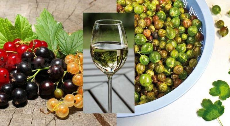 вино из смородины и крыжовника